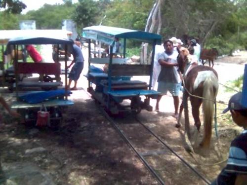 На эти лошади и вагонеты нас транспортилровали к сеноты.