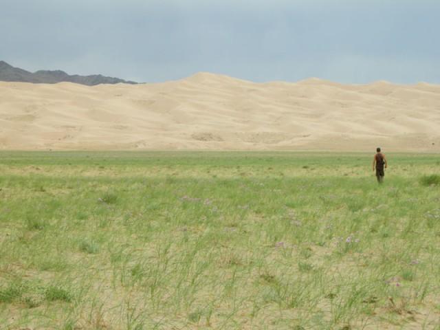 Монголия: Хонгорын Элс