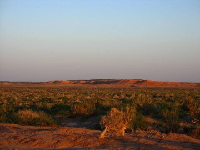 Монголия: Пустыня Гоби: Баянзаг