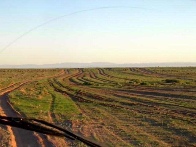 Свобода выбора на монгольской дороге: только по правую руку насчитали 7 полос