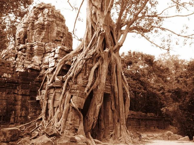 Другие достопримечательности Ангкор-Вата