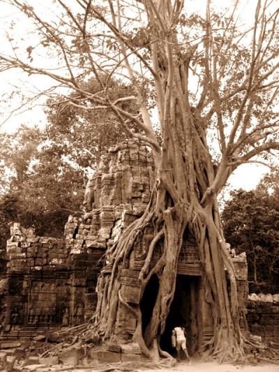 Дверь в другой мир. Храм Ta Som