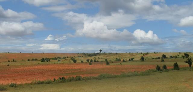 По дороге из НяЧанга в МуиНэ