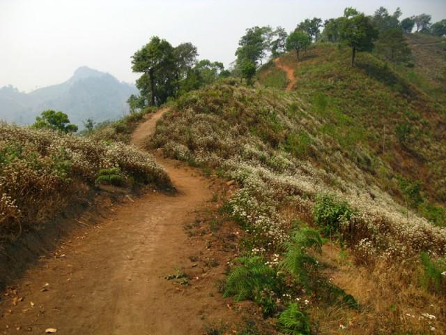 Прогулка в гору