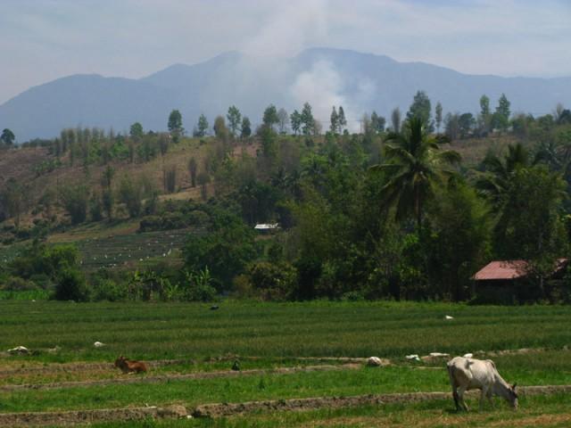 По дороге на высшую гору Таиланда