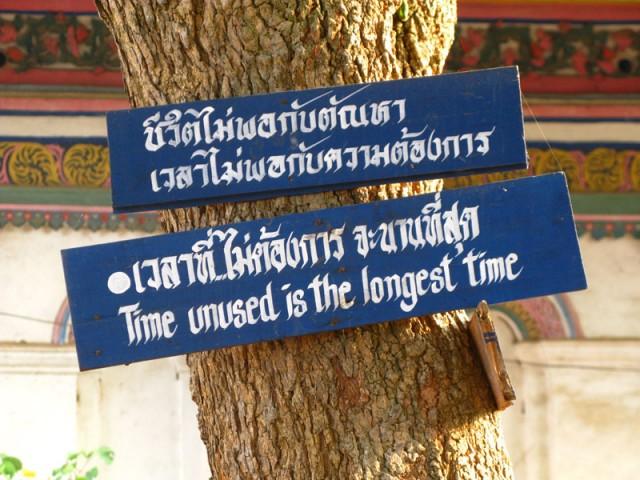 Мудрые мысли на деревьях в монастыре