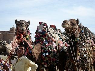 Фестиваль в Раджастане