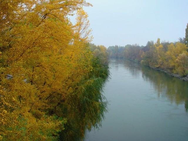 приток Дуная