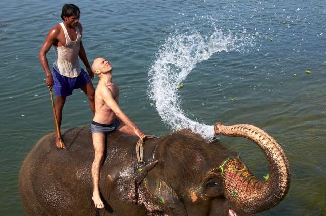 Купание слонов в Читване 3