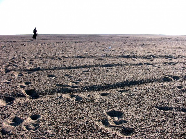 Финский залив. 5 (photos by bigcrow)