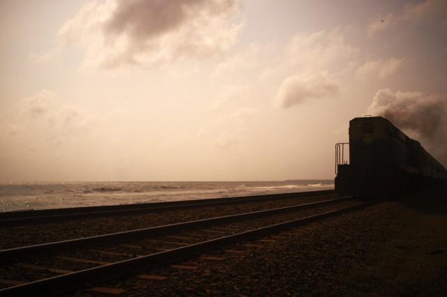Шри-Ланка 48