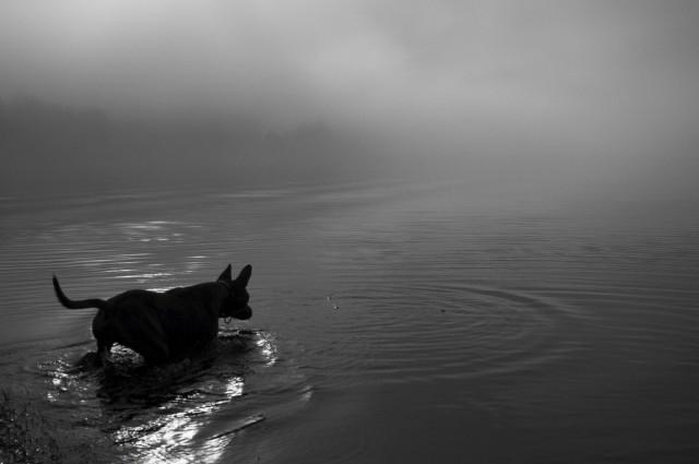 Россия №57: Телецкое озеро 2010