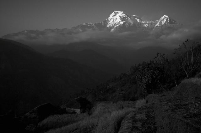 Непал №105