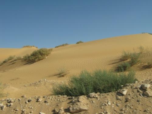 пустыня-это клёво!(Коtя)