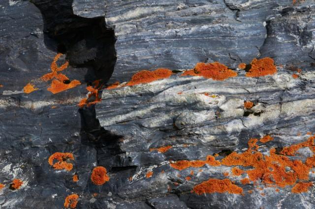 Камнеощущение