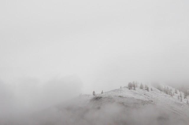 Вам хотелось бы вернуться назад, в туман неведения