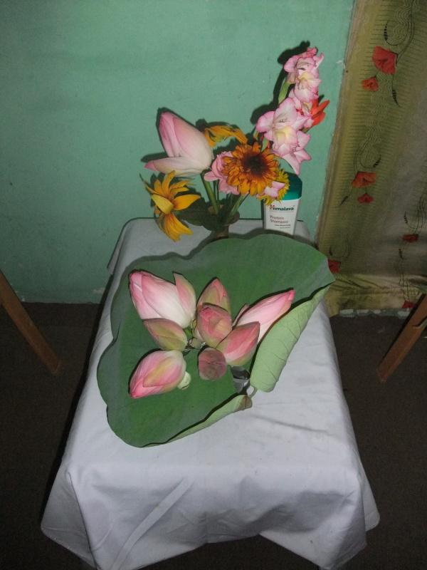 Шринагарский натюрморт