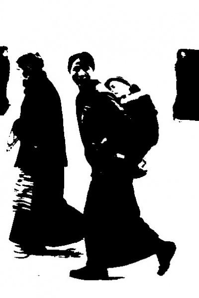 Тибетка с детенышем