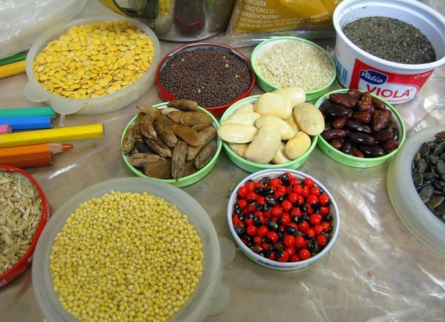 Семена, зерна и специи обладают собственными натуральными цветами и фактурой