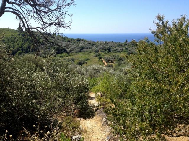 Спуск к пещере находится прямо под селом Бабино Поле
