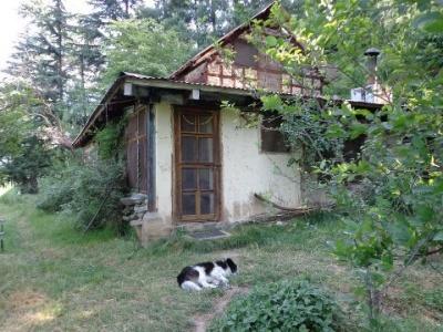 огромный и странный дом в секретном месте Наггара