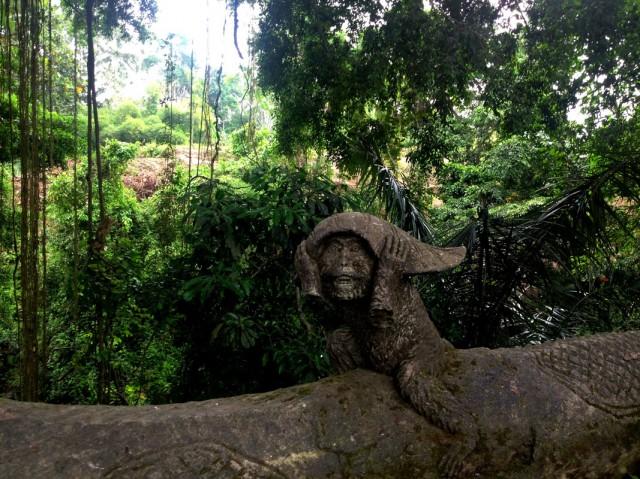Monkey Forest 09
