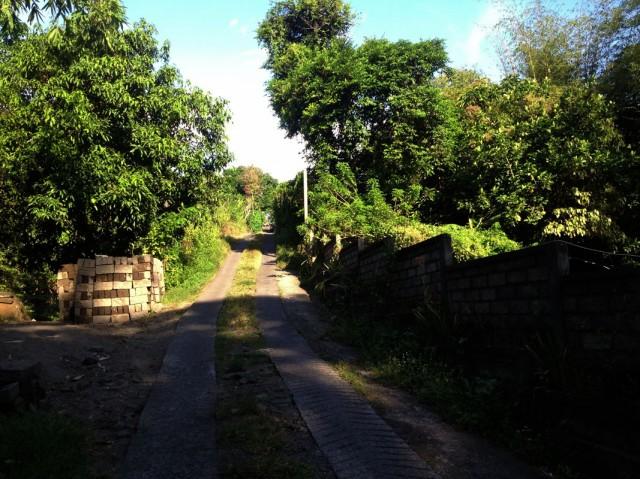 Дорога через деревни 02