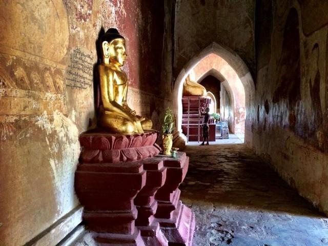 Будды 11
