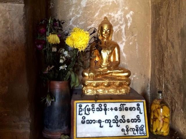 Будды 6