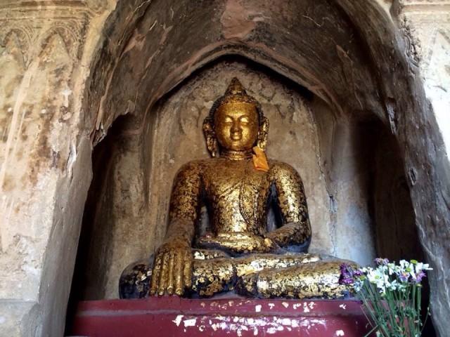 Будды 8