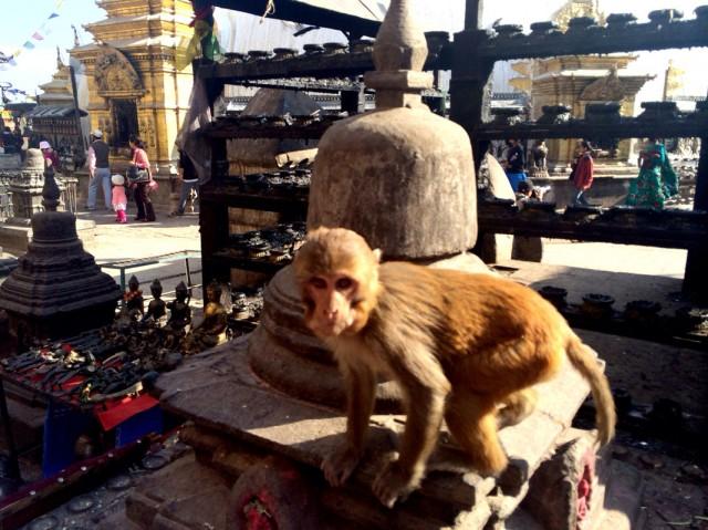 Swayambhunath Stupa 10
