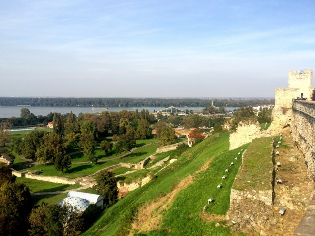 Белград 16