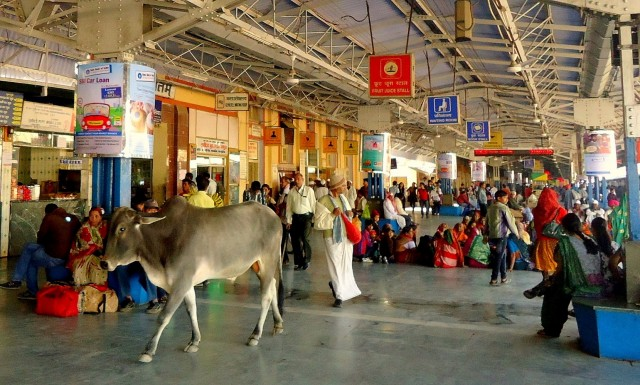 На жд вокзале в ожидании своего поезда в Дели