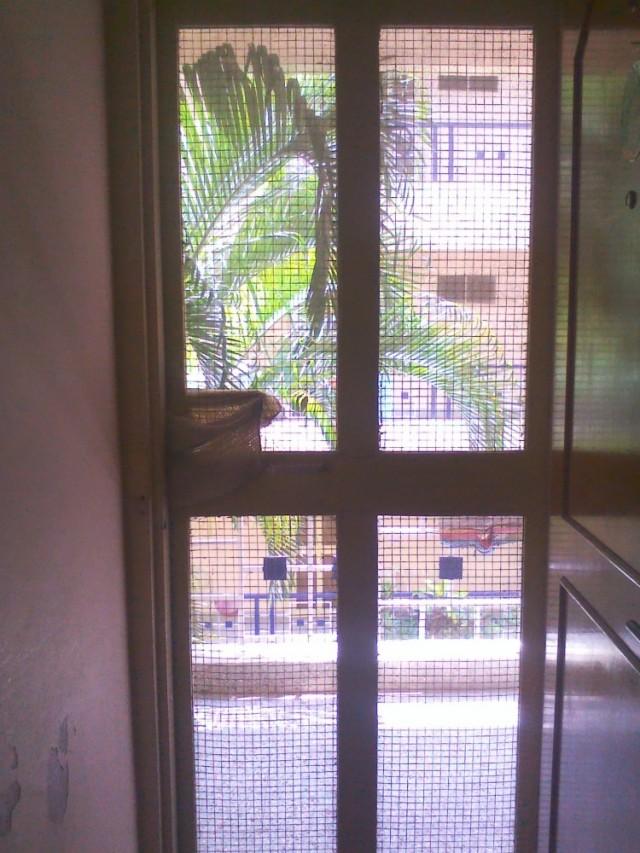 Вид из двери в ашраме. Пальмы