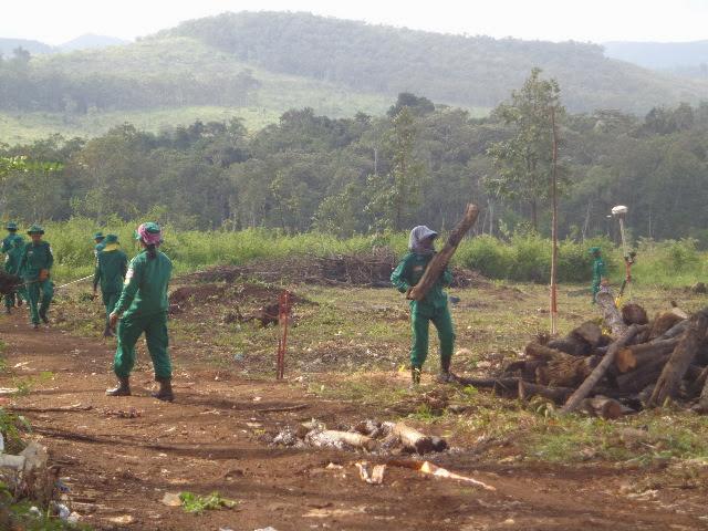 Процесс разминирования полей в Mondulkiri.