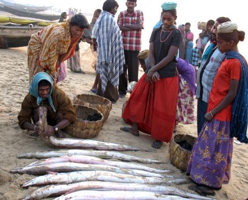 Свежачок. Рыбный рынок на берегу