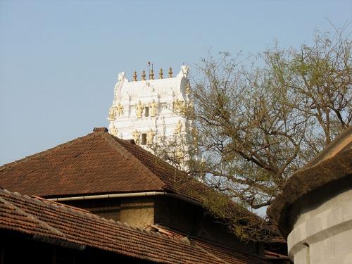 Вид из храма Шри Анантешвара