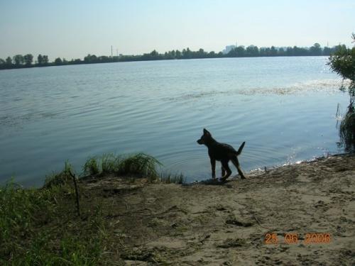 Ни фига себе сколько воды))))