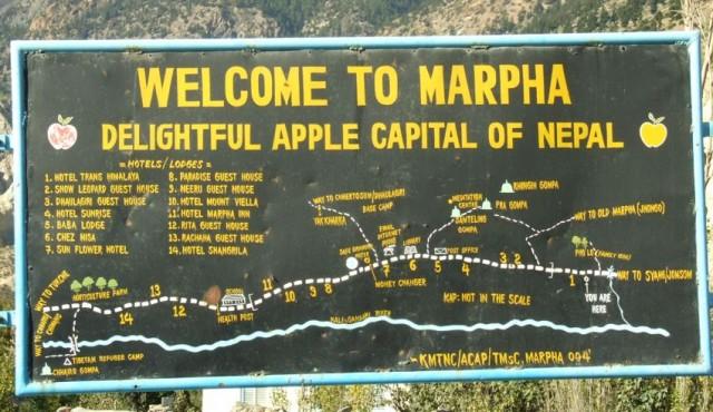 19. WELCOM TO MARPHA