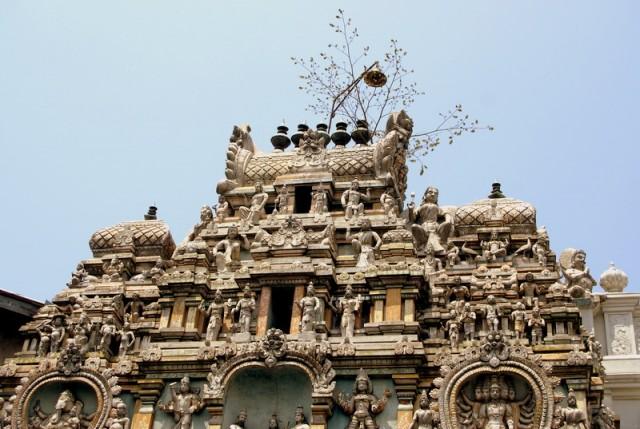 На крыше храма выросло дерево