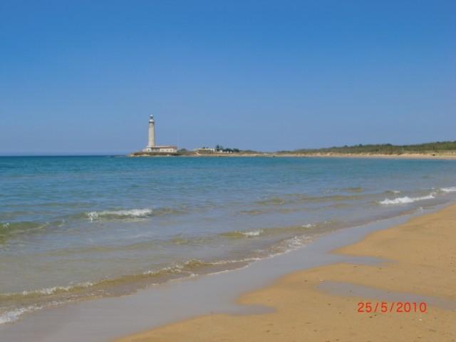 С отельного пляжа вид на мыc Картибуббо