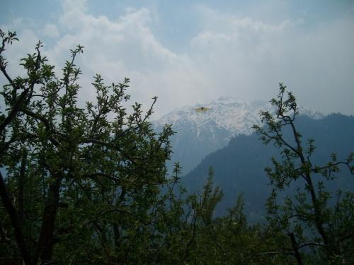 Kinnor Kailash,Sangla village,Kinnor valley,H.p