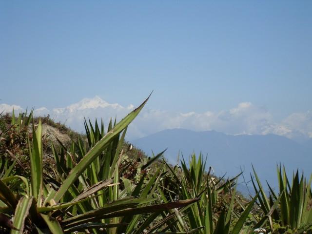 Канченджанга. Вид из Калимпонга.