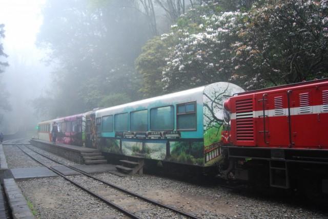 лесной поезд