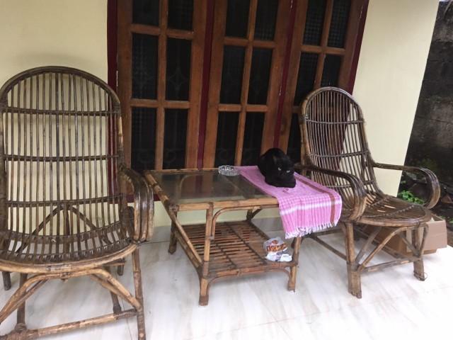Терраса за окном комнате и случайный черные гость:)