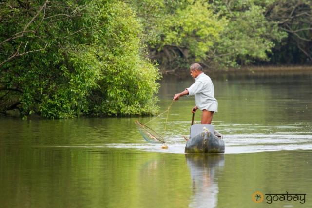 GoaBay Индия Рыбалка