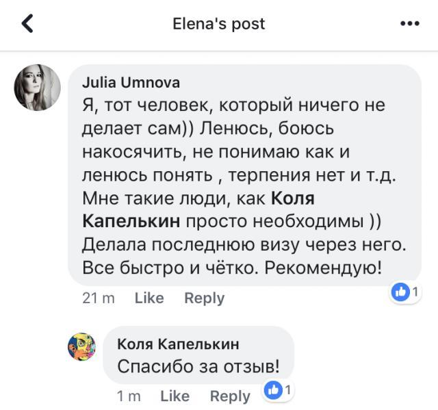 Отзывы об inzd.ru про оформление годовой визы