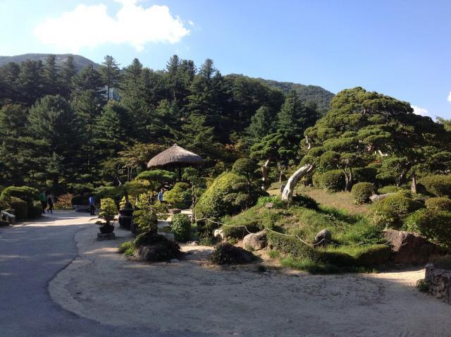 Сад утреннего спокойствия 1