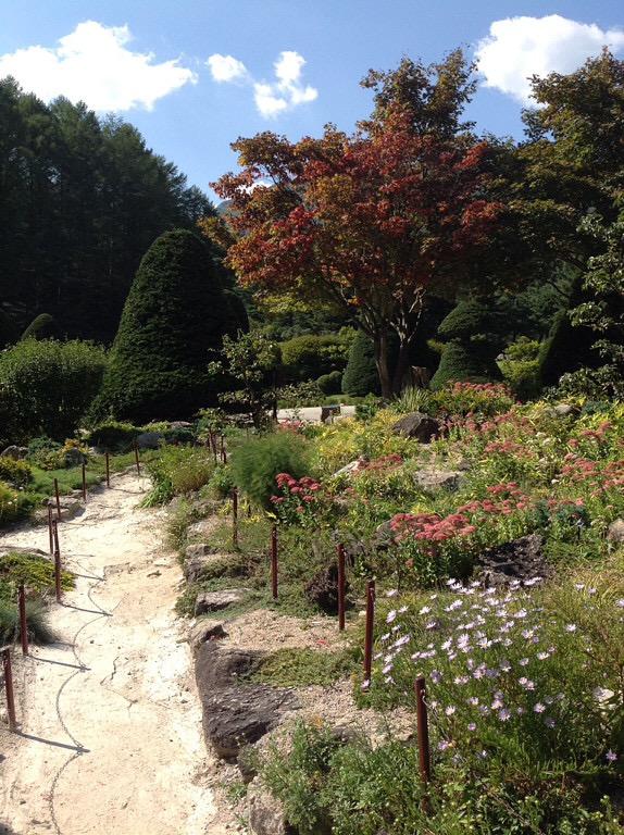 Сад утреннего спокойствия 3