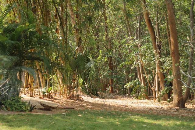 Ананда парк,Путтапарти